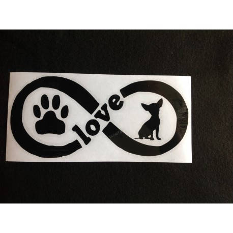 Chihuahua infinity love